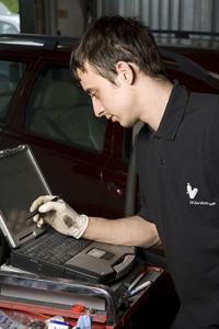 IVS Services